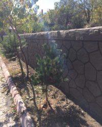 baskı-sıva-baskı-duvar-beton (17)